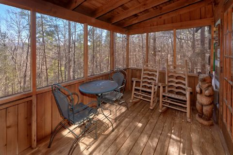 Rustic cabin with screened porch and Hot tub - A Bear Adventure