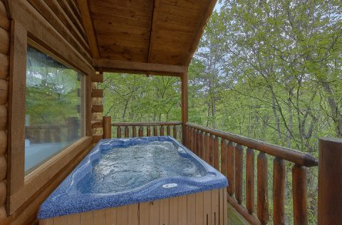 Luxurious 2 bedroom cabin with private hot tub - A Bear Affair