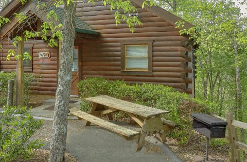 Cabin with picnic table, grill and wooded views - A Bear Affair