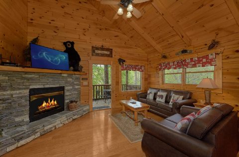 Premium 2 bedroom cabin with fireplace - A Bear Affair