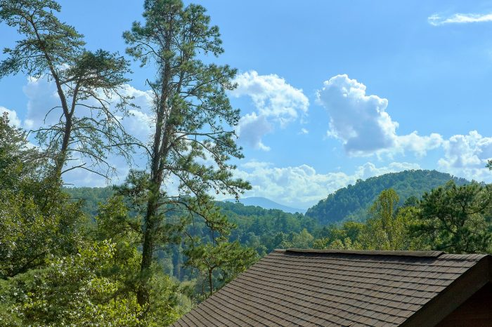 Rustic 2 Bedroom Cabin Sleeps 8 with a View - A Beary Happy Place