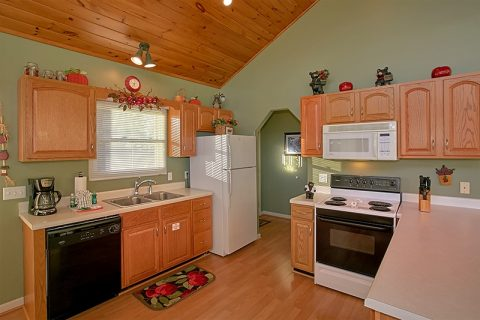 Cabin with Full Kitchen and Mountain Views - A Dream Come True