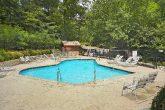 Black Bear Falls Resort Pool