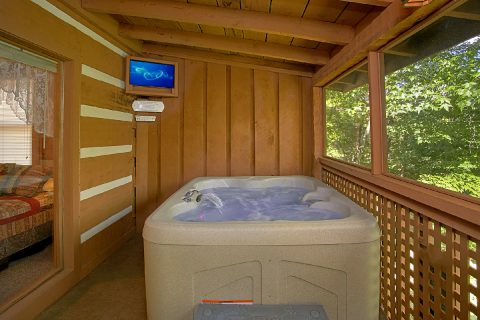 Cabin with Hot Tub and Outside TV - A Hummingbird Hideaway