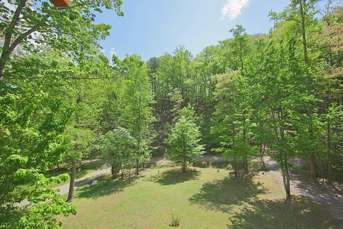 Private 1 bedroom cabin with wooded view - A Love Nest