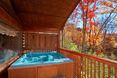 Luxury 1 bedroom Cabin with private Hot Tub - A New Beginning