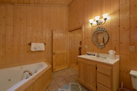 5 bedroom cabin with Jacuzzi in master bath - A Stunning View