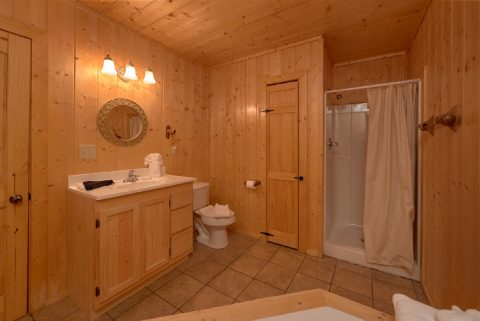 Cabin in Shagbark resort with 4 Jacuzzi Tubs - A Stunning View