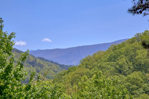 Mountain View from 3 bedroom cabin - A Tennessee Delight