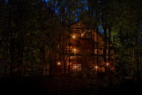 Wooded View from 2 bedroom cabin - A Twilight Hideaway