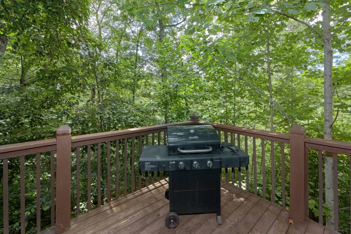 Rustic Cabin with Gas Grill and wooded View - A Woodland Hideaway