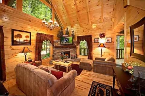 Gatlinburg Cabin with Living Room - Adler's Ridge