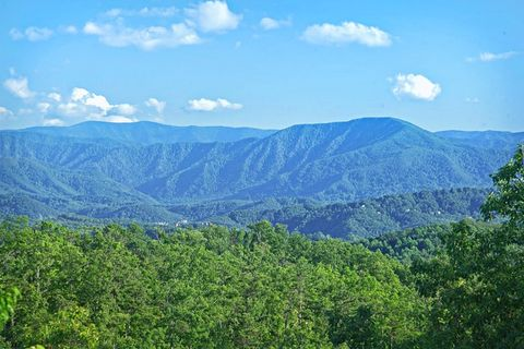 Views of the Great Smoky Mountains - Adventure Lodge