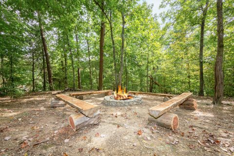Large Fire pit at 7 Bedroom cabin - Alexander the Great
