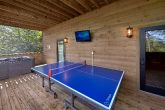 6 bedroom cabin with Ping Ping Table and arcade