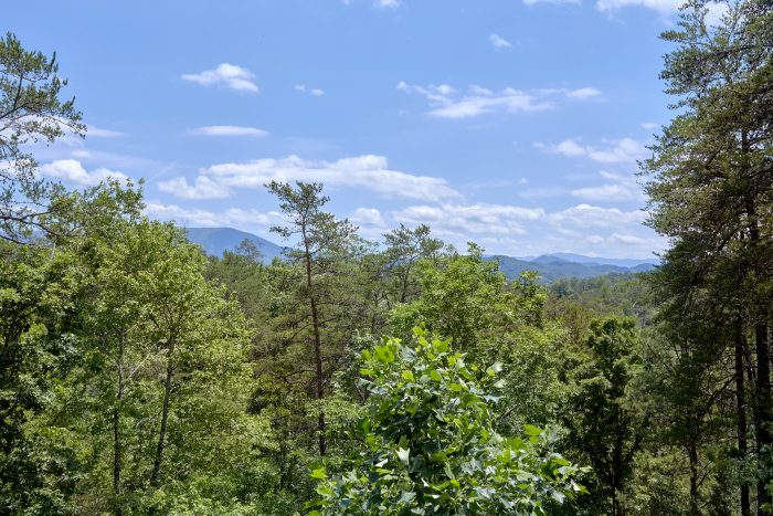 Wears Valley cabin with Views from back deck - American Dream Lodge