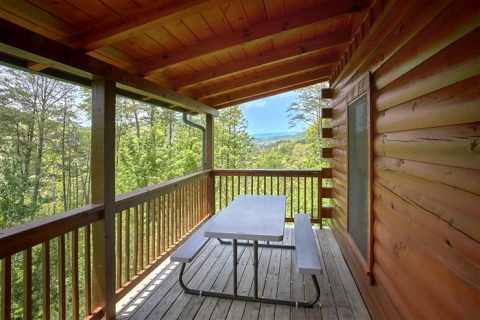 2 bedroom cabin with views of the Mountains - American Pie