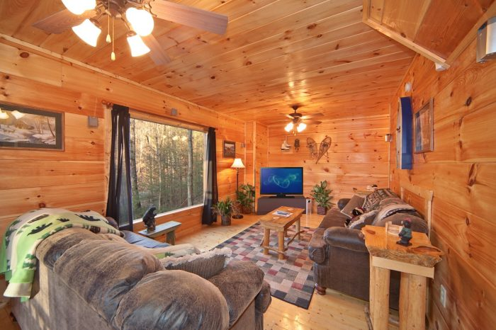 Cabin with Additional Downstairs Den - Bear Footin In The Smokies