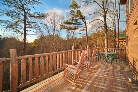 Great Smoky Mountain Cabin Rental with Views - Bear Footin In The Smokies