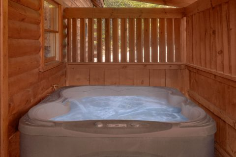 Private Hot Tub 1 Bedroom Cabin - Bear Hugs II