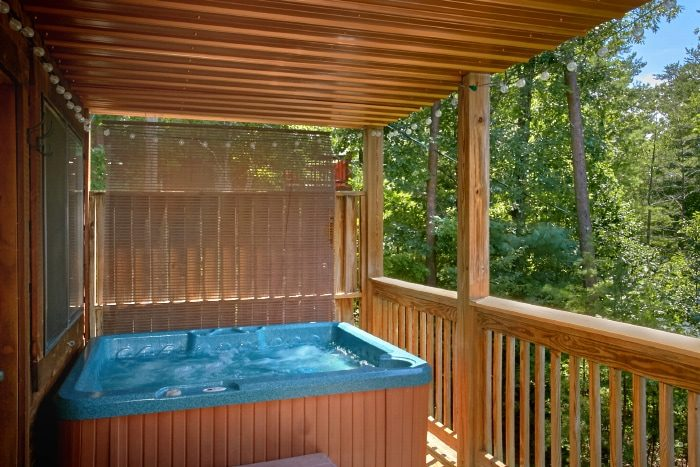 Private 2 Bedroom Cabin with Hot Tub and Views - Bear Necessity