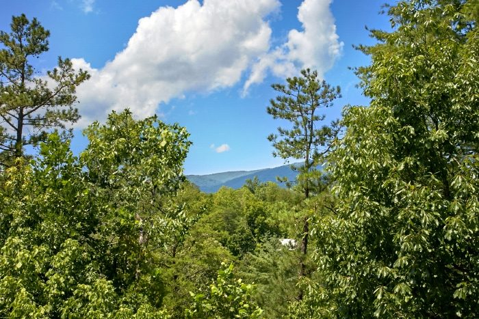 2 Bedroom Cabin in Pigeon Forge with Views - Bear Necessity