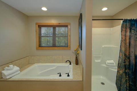 Master Bathroom with Jacuzzi and Shower - Bear Paws