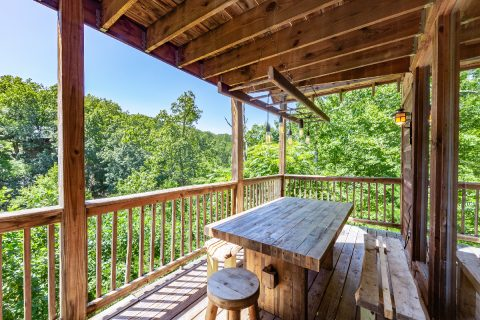 Spacious Cabin with Outdoor Picnic Table - bearHAVEN