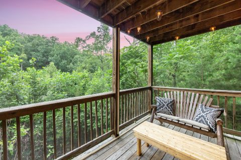 Screened in Porch with Outdoor Furniture - bearHAVEN