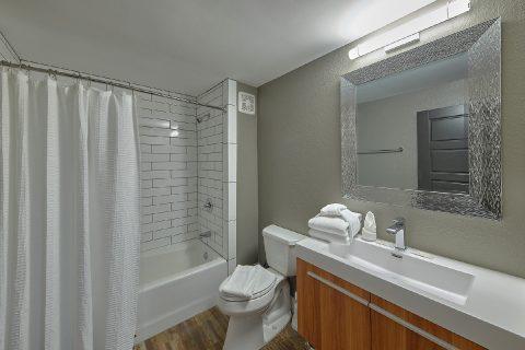 Private Master Bathroom in 11 bedroom cabin - Bluff Mountain Lodge