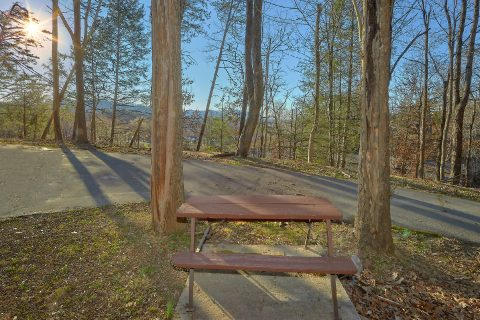 Rustic Cabin in Pigeon Forge with Picnic Table - Byrd Box