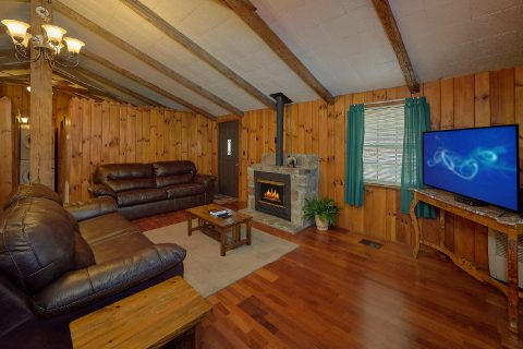Smoky Mountain 2 Bedroom Cabin with Cable & WiFi - Byrd Nest