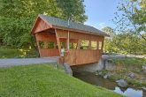 2 Bedroom Cabin in a Resort near Dollywood