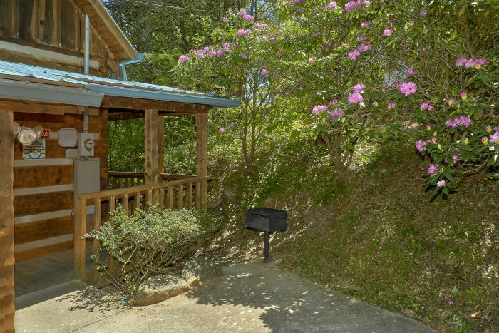 Rustic 1 bedroom cabin on the creek with grill - Cuddle Creek Cabin
