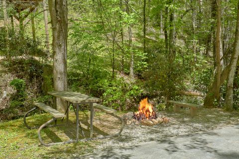 1 Bedroom Cabin with a fire pit and picnic table - Cuddle Creek Cabin