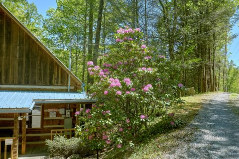 Private Cabin with hot tub, grill and fire pit - Cuddle Creek Cabin