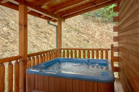 Luxury Cabin with Private Outdoor Hot Tub - Dew Drop Inn