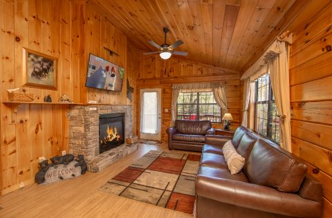 Cabin with Sleeper Sofa, Fireplace and TV - Dreams Come True