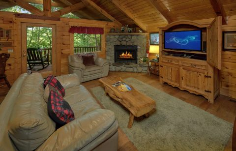 1 bedroom cabin with fireplace in living room - Dreamweaver
