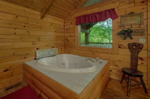 Cozy 1 bedroom cabin with jacuzzi tub - Dreamweaver