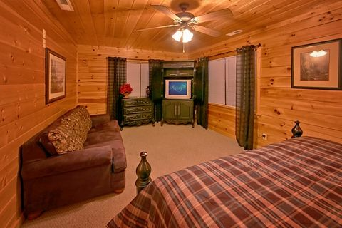 Cabin with King suite and sleeper sofa in room - Great Aspirations