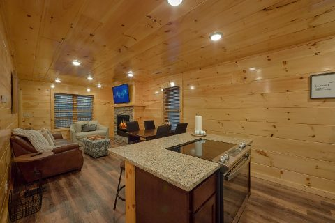 Luxury 2 bedroom cabin with cozy Living Room - Hickory Splash