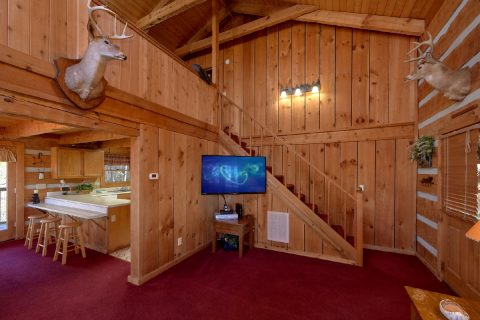Spacious living room with TV in 2 bedroom cabin - Hillbilly Deluxe
