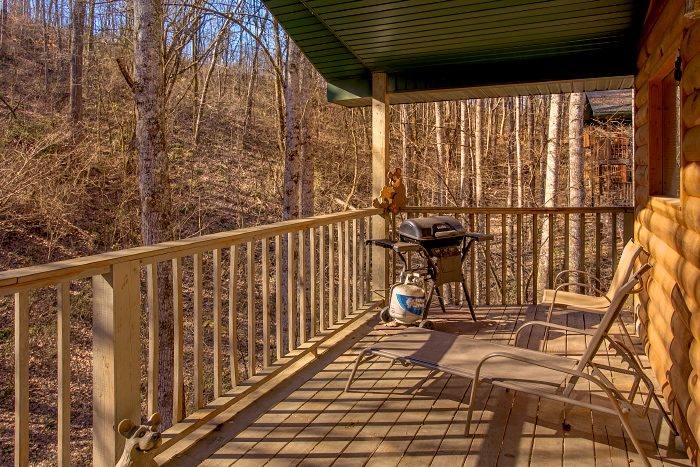 2 Story 2 Bedroom Cabin with Wooded View - Honey Bear Hill