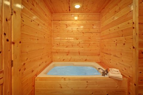 Premium Pigeon Forge Cabin with Indoor jacuzzi - Hook, Line and Sinker