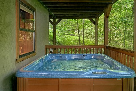 Private Hot Tub 3 Bedroom Cabin Sleeps 8 - Hunting Hollow Haven