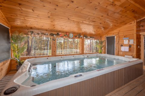 1 bedroom cabin with Private Swim Spa Pool - It's A Waterful Life