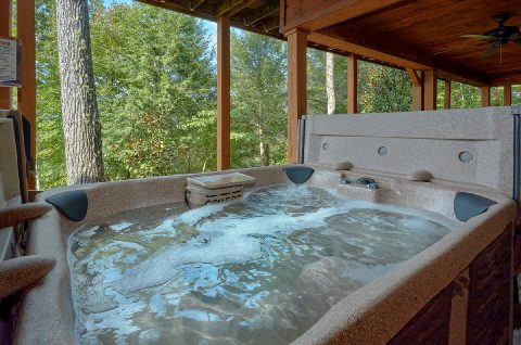 6 Bedroom Cabin with 2 Hot Tubs Sleeps 18 - KenKnight's Wilderness Lodge