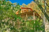 Great Smoky Mountain 1 bedroom cabin