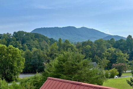 Hailey's Comet: 1 Bedroom Pigeon Forge Condo Suite Rental